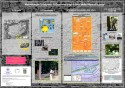 Metodologie Integrate di Gestione degli Alberi delle Mura di Lucca | Poster
