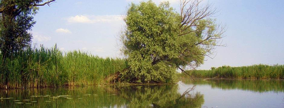 Pianificazione di aree protette e siti Natura 2000
