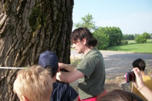 I Grandi alberi di noi piccoli