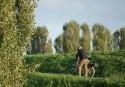 Piano dell'intermodalità sostenibile del Sistema Parchi dell'Oltrepò Mantovano